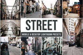 Street Mobile and Desktop Lightroom Presets Z8V9AU3 5