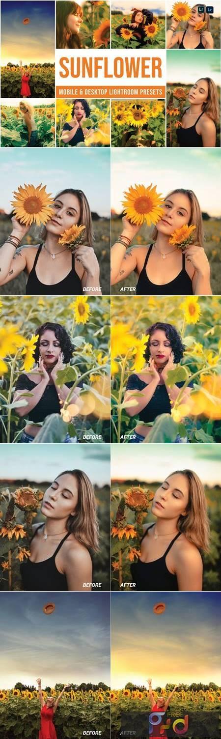 Sunflower Mobile and Desktop Lightroom Presets 976X966 1