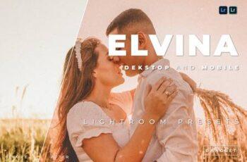 Elvina Desktop and Mobile Lightroom Preset ASUFCAK 3