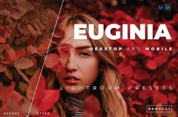Euginia Desktop and Mobile Lightroom Preset 8EMBP6V 8