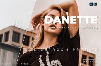 Danette Desktop and Mobile Lightroom Preset R9LFDE7 5