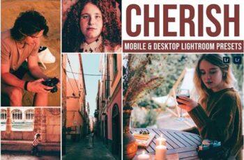 Cherish Mobile and Desktop Lightroom Presets JN2KDXH 7