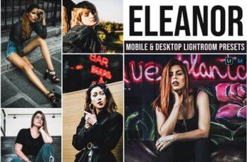 Eleanor Mobile and Desktop Lightroom Presets DM8WDYP 7