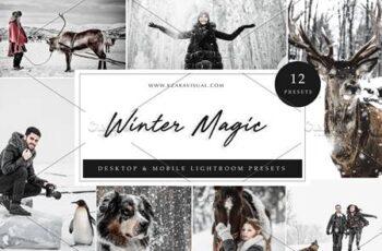 12 x Lightroom Presets, Winter Magic 5962774 6