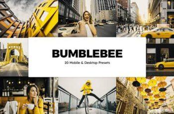 20 Bumblebee Lightroom Presets & LUTs 6179674 7