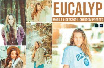 Eucalyp Mobile and Desktop Lightroom Presets D5AW273 7