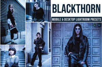 Blackthorn Mobile and Desktop Lightroom Presets ED6UDUW 7