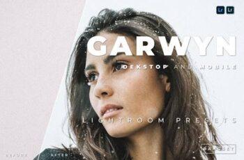 Garwyn Desktop and Mobile Lightroom Preset 9GX6B5W 2