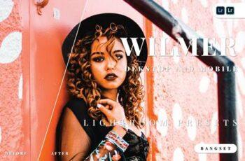 Wilmer Desktop and Mobile Lightroom Preset 3VQWXXU 2
