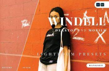Windell Desktop and Mobile Lightroom Preset 3RB2WXN 3