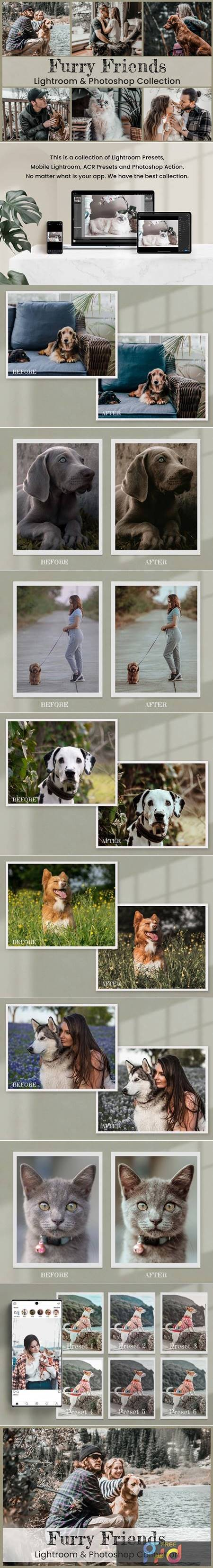 15 Furry Friends Collection 6204182 1
