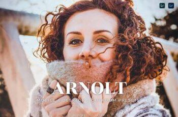Arnolt Mobile and Desktop Lightroom Presets AGLM5B8 6