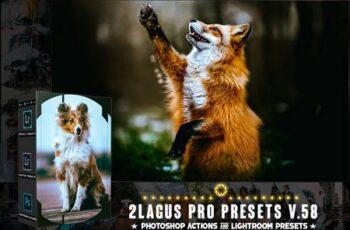 PRO Presets - V 58 - Photoshop & Lightroom PZTR7EW 2