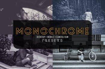 50 Monochrome Lr+Dng+Acr Presets 4267691 2