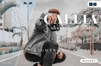 Callia Desktop and Mobile Lightroom Preset XBZGMQW 6