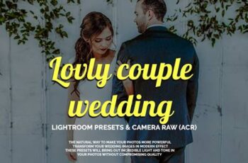 Lovly couple wedding LR&ACR presets 3844809 6