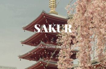 Sakur Lightroom Presets Dekstop and Mobile SJ89273 2