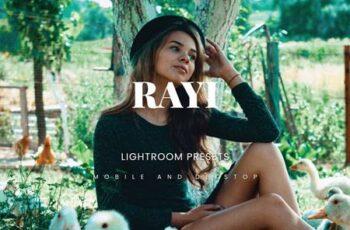 Rayi Lightroom Presets Dekstop and Mobile E8FBGCX 6