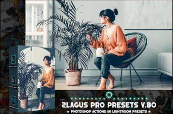 PRO Presets - V 80 - Photoshop & Lightroom CSLR7VM 3