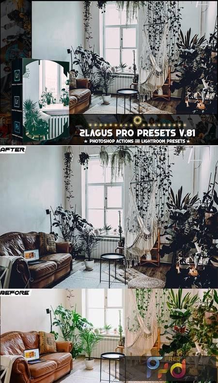 PRO Presets - V 81 - Photoshop & Lightroom C6AVREQ 1