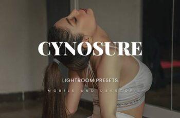 Cynosure Lightroom Presets Dekstop and Mobile 6YT8C5D 7