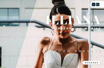 Ilianna Desktop and Mobile Lightroom Preset Z4T26XG 2