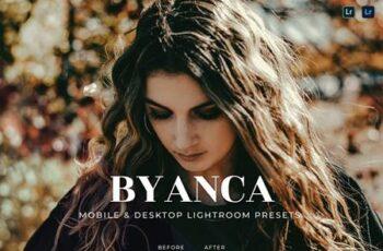 Byanca Mobile and Desktop Lightroom Presets WBE3RWE 6