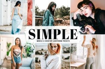 Simple Pro Lightroom Presets 6252067 4