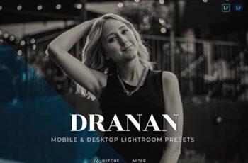 Dranan Mobile and Desktop Lightroom Presets 2ZUB7QT 3