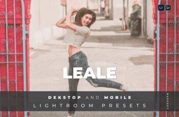 Leale Desktop and Mobile Lightroom Preset 5PQGKYD 4