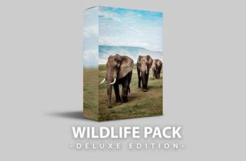 Wildlife - Deluxe Edition for mobile and desktop E63N6FV 4