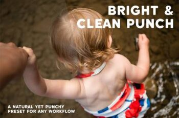 Bright & Clean Punch 5803450 8