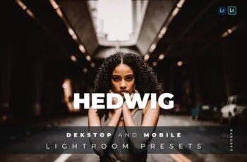 Hedwig Desktop and Mobile Lightroom Preset 68K5KQ5 6