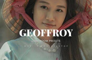 Geoffroy Lightroom Presets Dekstop and Mobile QTJ54MF 2