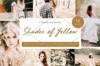 10x Lightroom Presets Shades Yellow 6071356 3