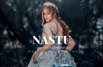 Nastu Lightroom Presets Dekstop and Mobile 4EYB5Q6 5