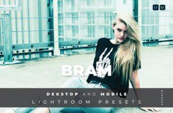 Bram Desktop and Mobile Lightroom Preset 82D9QR8 6