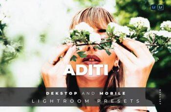 Aditi Desktop and Mobile Lightroom Preset R7A7BSZ 5