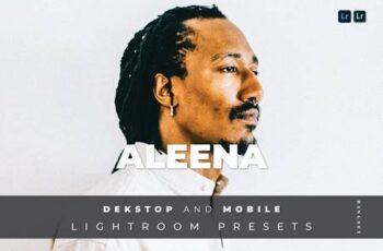 Aleena Desktop and Mobile Lightroom Preset D2MPF83 6