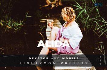 Alida Desktop and Mobile Lightroom Preset DYNXXHP 2