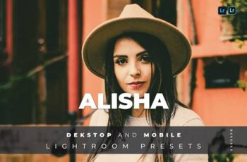 Alisha Desktop and Mobile Lightroom Preset 85HHLAV 4