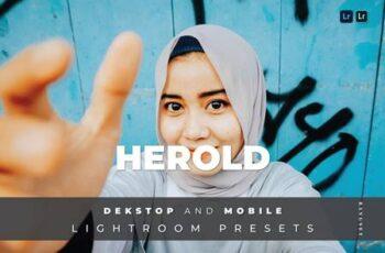 Herold Desktop and Mobile Lightroom Preset 46BWTFJ 4