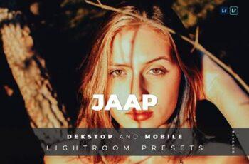 Jaap Desktop and Mobile Lightroom Preset CVMYV4V 2