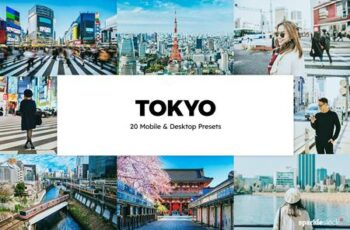 20 Tokyo Lightroom Presets & LUTs 6294731 4