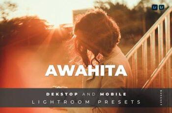 Awahita Desktop and Mobile Lightroom Preset L4FCRUR 2