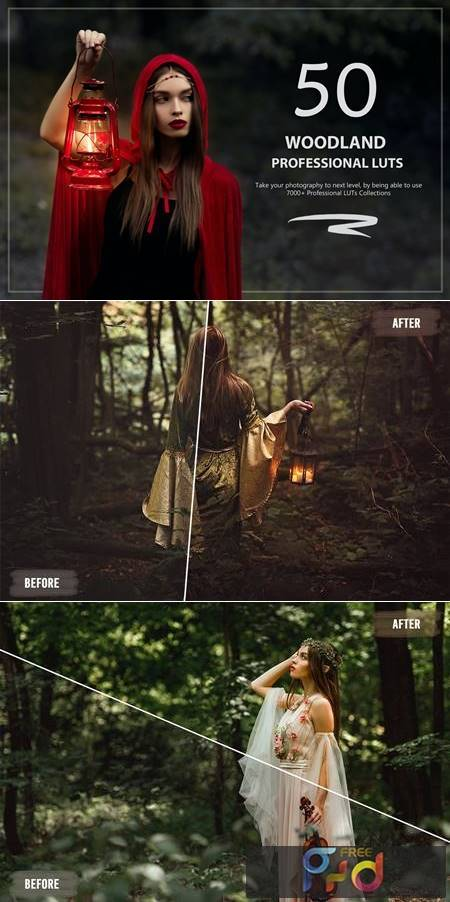 50 Woodland LUTs and Presets Pack 62LYGDK 1