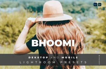 Bhoomi Desktop and Mobile Lightroom Preset 7U5XJ29 5