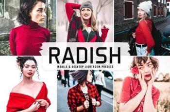 Radish Pro Lightroom Presets 6346243 8