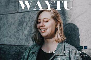 Waytu Mobile and Desktop Lightroom Presets 38KMFCN 3
