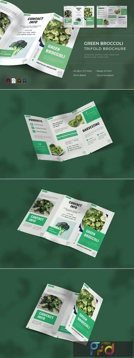 Green Broccoli - Trifold Brochure JC3PXQF 1